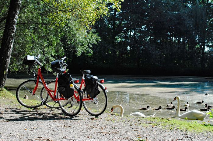 Bikes at the pond