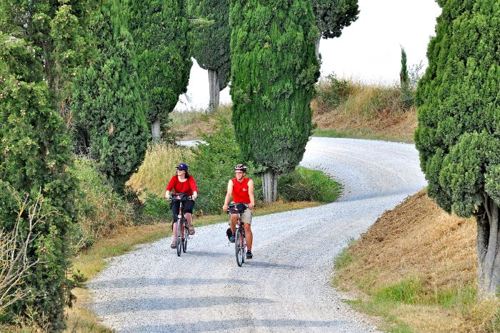 Cyclists on country road